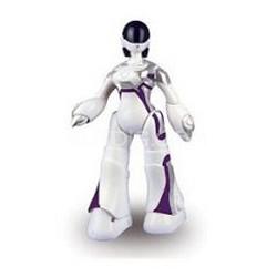 Mini Femisapien Humanoid Robot