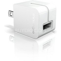 mMini AC Ultra Small USB Power Adapter