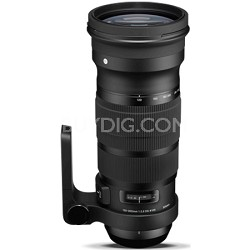 NEW SIGMA 120-300mm F2.8 DG OS HSM Telephoto Zoom Lens for Nikon - 137-306