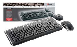 DS-3200  Wireless Keyboard & Wireless Optical Mouse