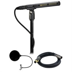 Line + Gradient Condenser Microphone - AT875R w/ Microphone Wind Screen Bundle