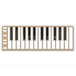 Xkey 25-Key MIDI Portable Mobile Musical Keyboard - Champagne