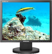 "723N 17"" LCD monitor"
