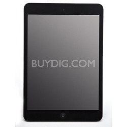 iPad Mini with Wi-Fi 16GB + Verizon 4G, Black