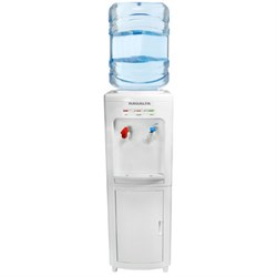 High Efficiency Thermo Electric Hot and Cold Water Cooler - RWC-195