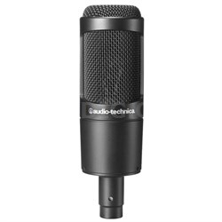 Cardioid Condenser Microphone (AT2035)