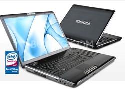 "Satellite P305-S8822 17"" Notebook PC (PSPC4U-02T014)"