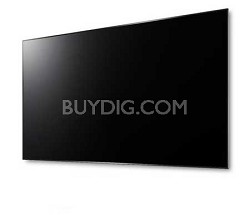 "Hecto 100"" Laser Projector Screen"