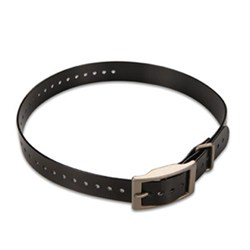1-inch Dog Collar Strap, Black 010-11892-01