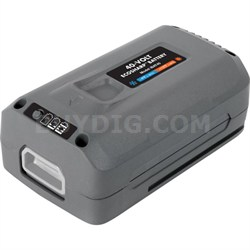 iBAT40 iON EcoSharp 40 V 4.0 Ah Lithium-Ion Battery
