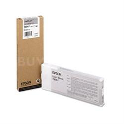 Light Black UltraChrome K3 Ink Cartridge - T606700