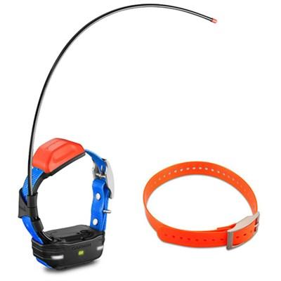 T 5 mini Dog Training Device with Collar - Dog Collar Strap Orange Bundle