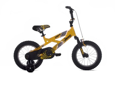 Boy's Bike (14-Inch Wheels)