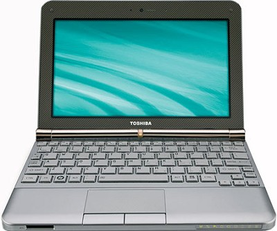 NB205-N330BN 10.1 inch Mini Notebook PC - Sable Brown
