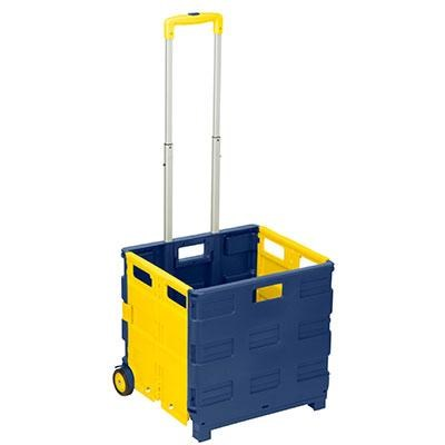 Rolling Folding CarryAll Crate