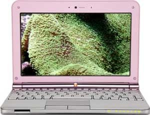 NB205-N313/P 10.1 Inch Netbook PC