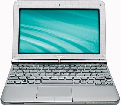 NB205-N325WH 10.1 inch Mini Notebook PC - Frost White