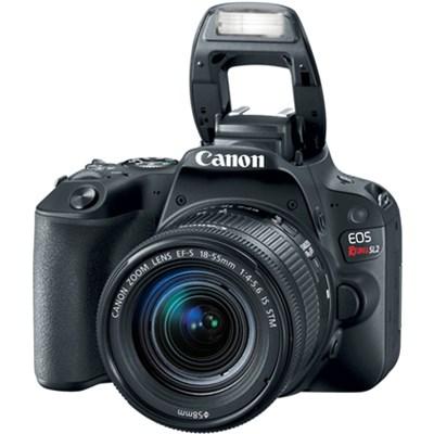 Canon EOS Rebel SL2 24MP SLR Digital Camera + EF-S 18-55mm IS...