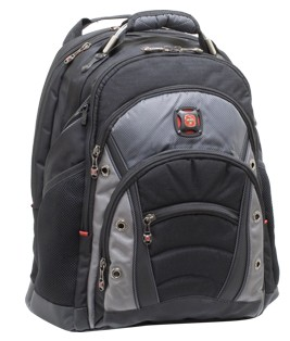 SwissGear Synergy Backpack for Notebooks up to 16`
