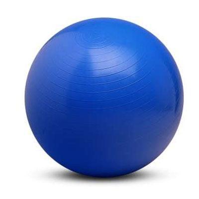 65cm Body Ball - VA4483