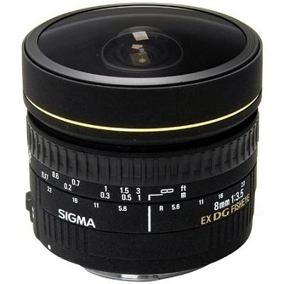 8mm f/3.5 EX DG Circular Fisheye Lens for Canon EOS SLR Cameras FREE FEDEX