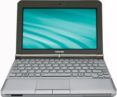 NB205-N325BN 10.1 inch Mini Notebook PC - Sable Brown