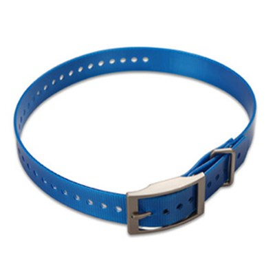 1-inch Dog Collar Strap, Blue 010-11892-04