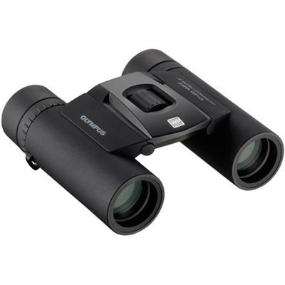 10X25 WP II Binocular 10 X Magnification Black - V501012BU000