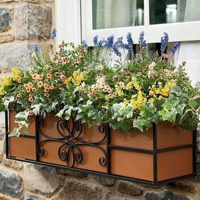 24` Quatrefoil Window Box