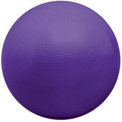 55cm Burst Resistant Ball in Purple - VA3582PU