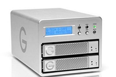 STORAGE, G-SAFE 500GB, RAID 1, 7200