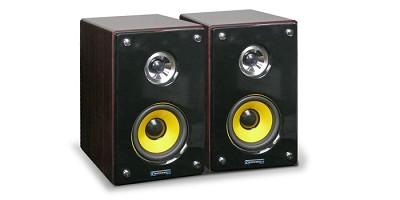 MRS53U 5` Studio Monitor Speakers