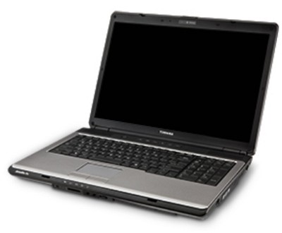Satellite Pro L350-S1001V 17` Notebook PC (PSLD1U-009007)