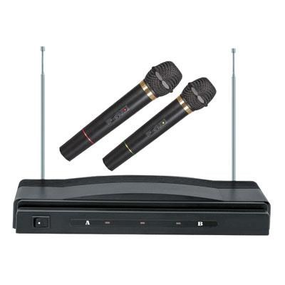 Professional Wireless Dual Microphone System Kit - SC-900
