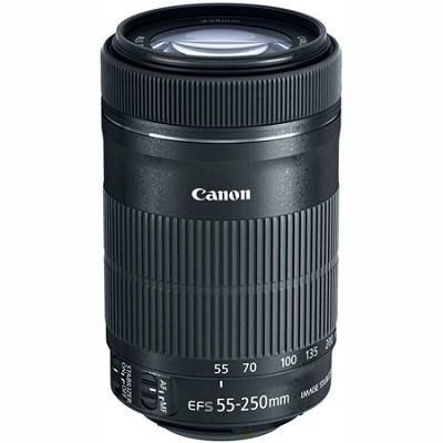 EF-S 55-250mm f/4-5.6 IS STM Lens (8546B002)