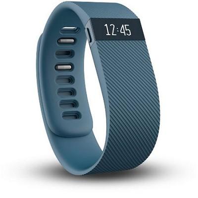 Charge Wireless Activity + Sleep Tracker Wristband - Slate - Large