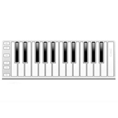 Xkey 25-Key MIDI Portable Mobile Musical Keyboard - Silver