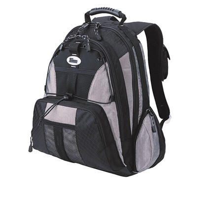 Sport Standard Computer Backpack in Black and Platinum - TSB212