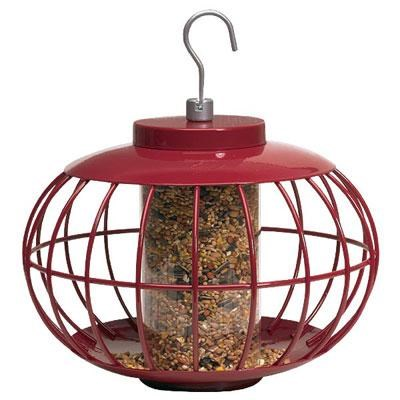 The Nuttery Seed Feeder Classi