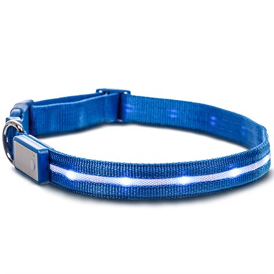LED Dog Collar w/3 Light Modes for Night Safety, Battery-Powered - Blue